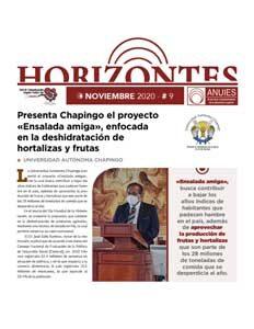 Publicación Horizontes Noviembre 2020