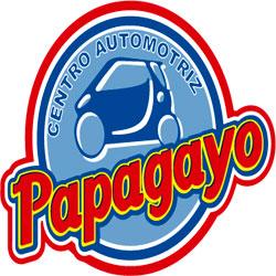 Logo del Centro Automotriz Papagayo