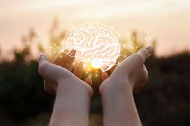 cerebro digital entre las manos